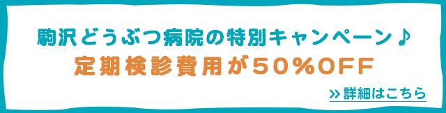 駒沢どうぶつ病院の特別キャンペーン♪定期検診費用が50%OFF>詳細はこちら